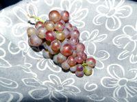Verkleurde en rijpe druiven!